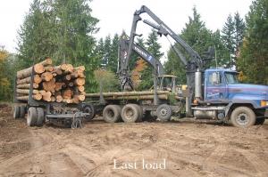 last load of logs