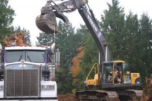 Loading stumps for river restoration